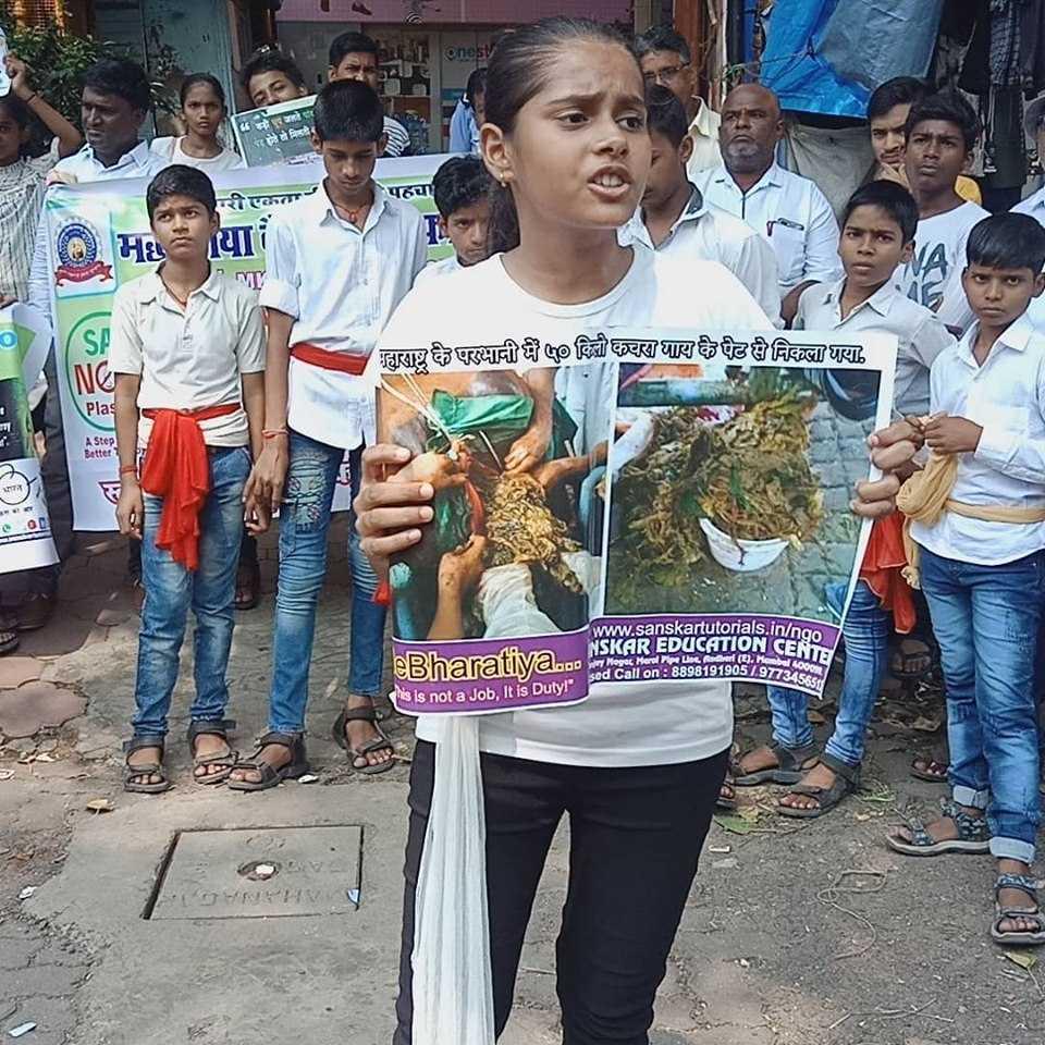 plastic awareness program