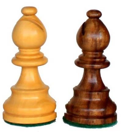 camel Chess शतरंज