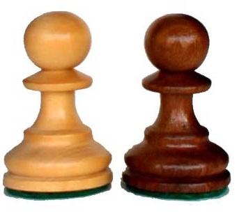 soldier Chess शतरंज