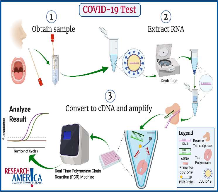 what is rt pcr test why take rt pcr test