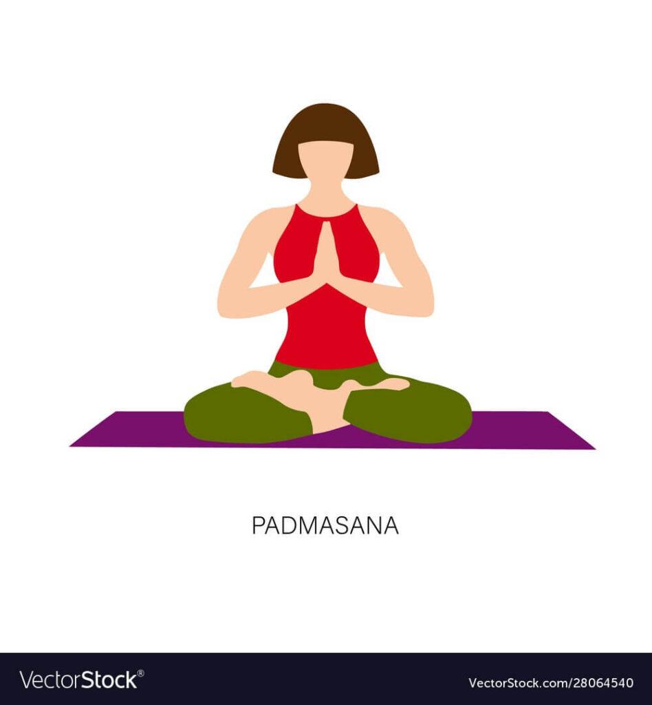 padmasana yoga pose